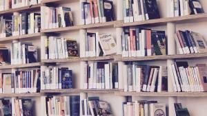 Regał z książkami o uzależnieniach